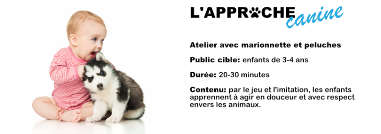 approche canine bandeau
